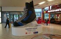 Хоккейные коньки - 350*290*160 см