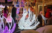 Лебедь (LED, kov, peří) - 150*150 см
